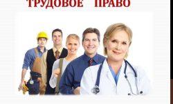 Источники трудового права в РФ - понятие, виды и классификация
