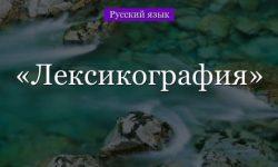 Лексикография – вопросы, виды